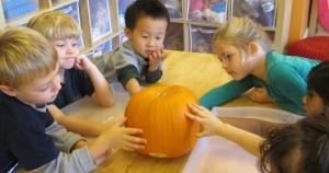 Exploring pumpkin 2